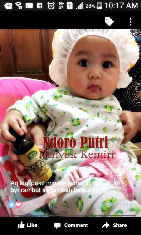 jual ndoro putri minyak kemiri asli penumbuh rambut bayi dan bunda Minyak Kemiri Penumbuh Rambut Bayi