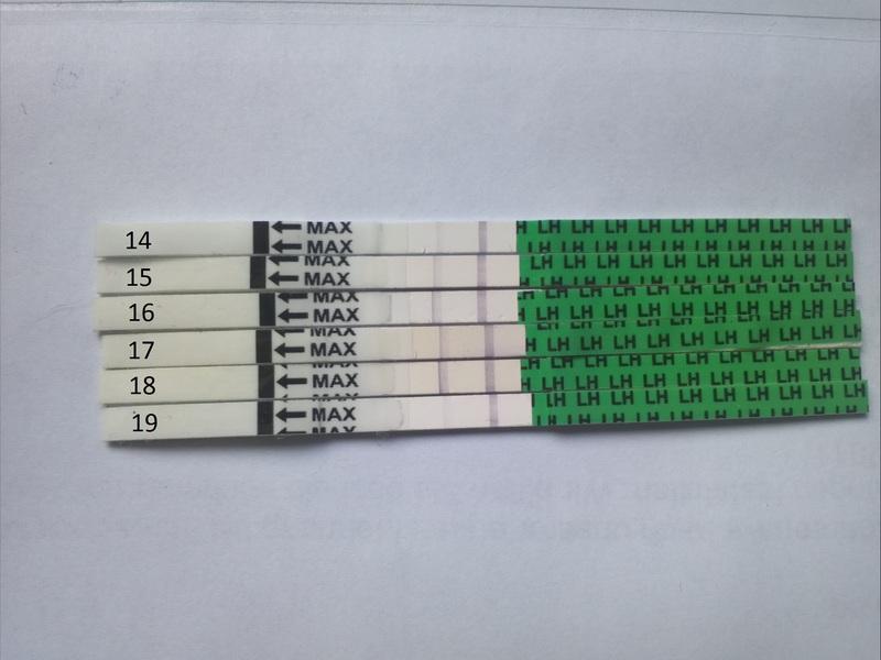 Baby Test One Med Untuk Deteksi Masa Subur Secara Murah