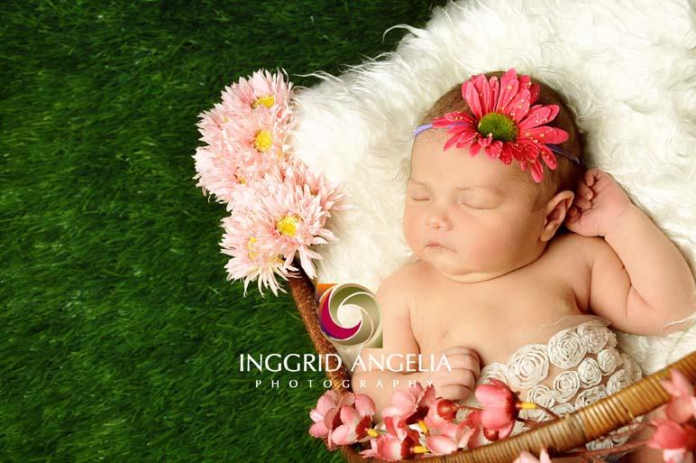 Profesional foto hamil maternity dan bayi newborn di bali inggrid