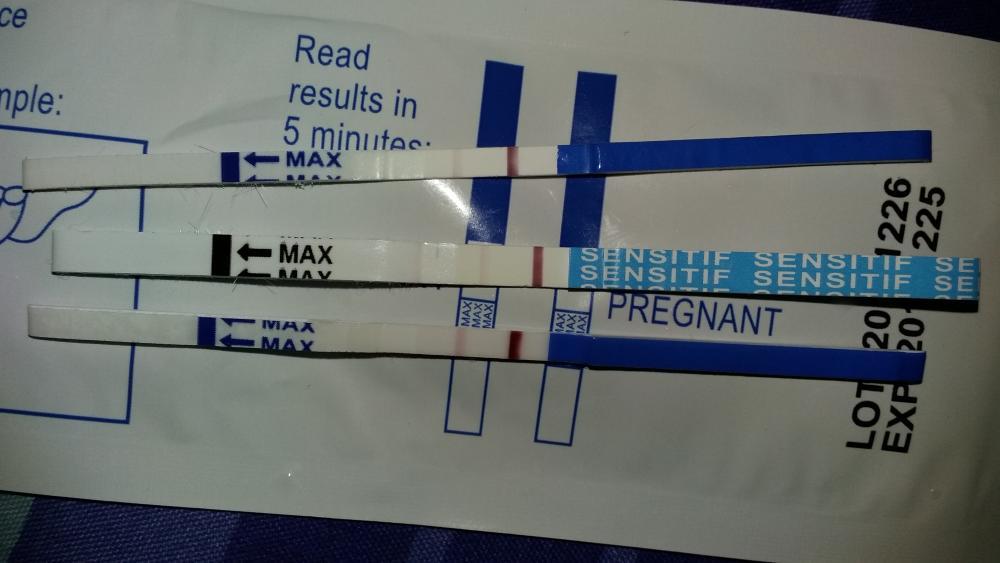 Telat Menstruasi, Tapi Hasil Test Pack Negatif