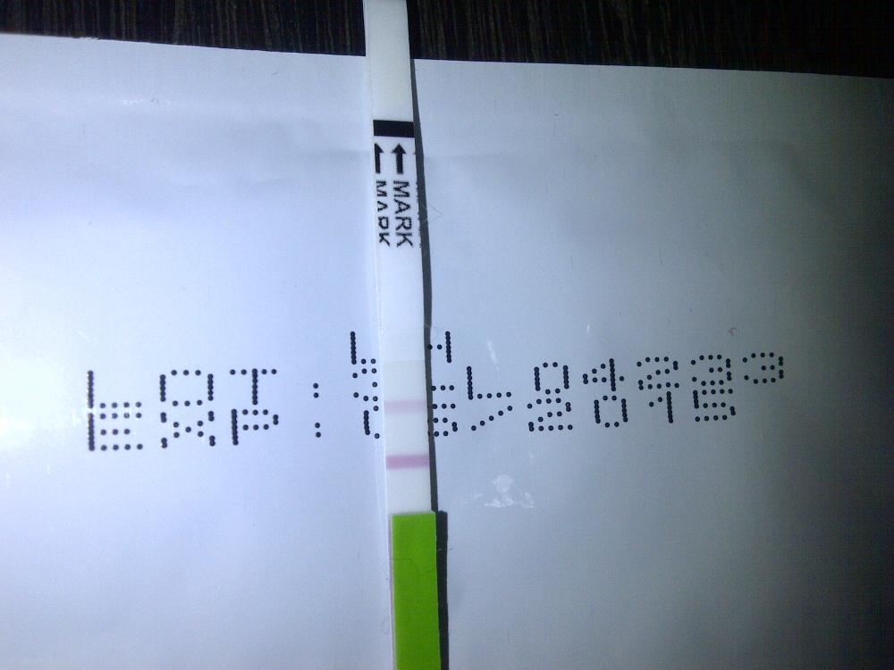 Hasil Baby Test Beginikah Ibuhamil Com